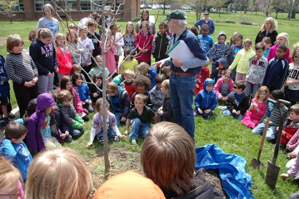 Every Arbor Day since 1982, the Yellow Springs Tree Committee has planted at least one tree on the Mills Lawn School grounds. This year the elementary yard got two new trees: a cucumber tree, which is a type of magnolia, and a scarlet oak. Above, Tree Committe member Bob Barcus and the new tree are surrounded by students from kindergarten to third grade, who earlier helped top off the tree's topsoil. (Photo by Suzanne Szempruch)