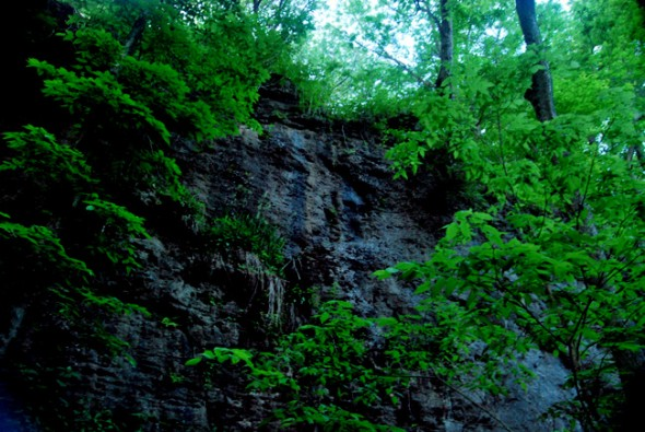 A cliff-face at Clifton Gorge State Park (photo by Aaron Zaremsky)