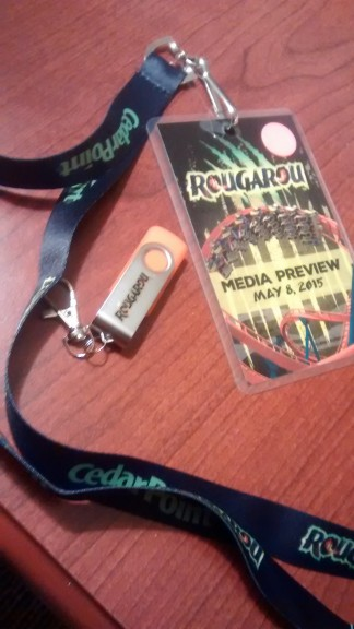 This is the most official thing I have ever worn or will probably ever wear, and it has a roller coaster on it.