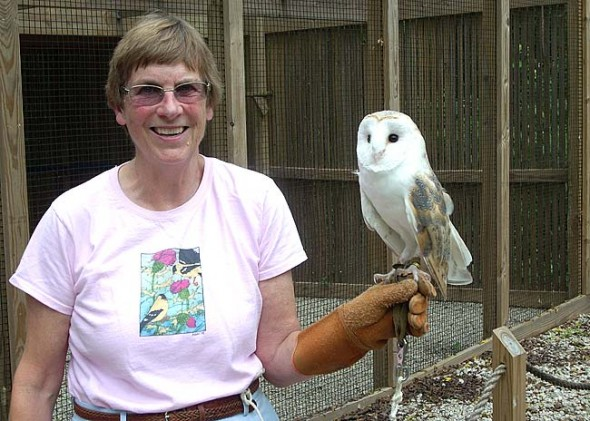 Betty Ross with one of the Raptor Center's permanent residents, a barn owl named Louie. Barn owls are not native to Ohio, but moved in after the forests were cleared for farming. After nearly 30 years as the Raptor Center's director, Ross retired last month. (Photo by Audrey Hackett)
