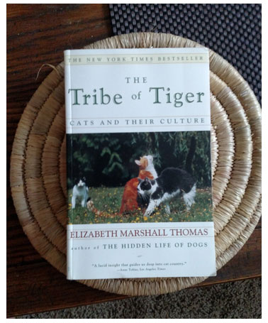 Tribe of the Tiger