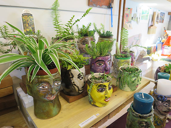 plant people by Beth Holyoke