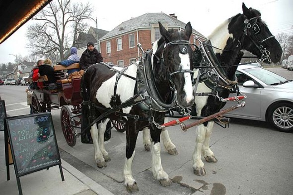 Horse-drawn carriage rides provided by Horse-N-Around Farm will be provided from noon to 3 p.m. Saturday, Dec. 12, as part of Holiday Fest.
