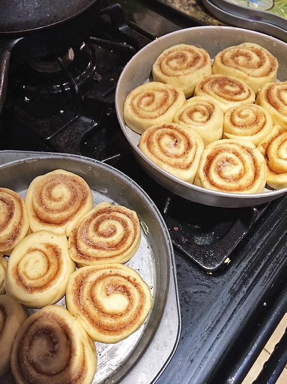 oven ready rolls