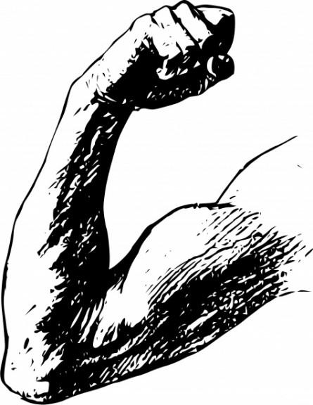 arm-muscle-flex