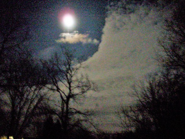 Night sky, the first day of spring, 2016. (Photo by Audrey Hackett)