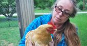 "Trish Russell poses with one of her ""ladies"", a hen she has raised for eggs in a backyard coop in Yellow Springs."