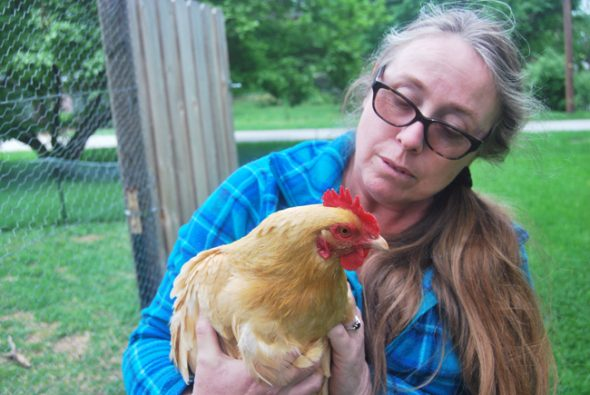 """Trish Russell poses with one of her """"ladies"""", a hen she has raised for eggs in a backyard coop in Yellow Springs."""