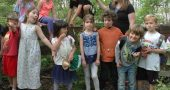 forest kindergarten header