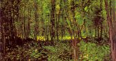 """Vincent van Gogh, """"Trees and Undergrowth,"""" 1887. (Via Wikiart)"""
