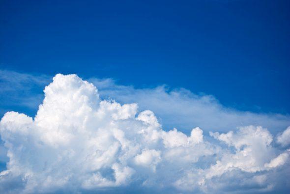 Bulbous shapes float through the sky.