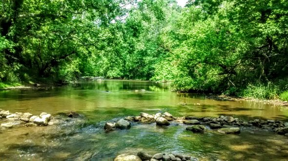 The Little Miami River. (Photo by Lauren Shows)