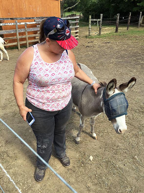 donkey watchdog
