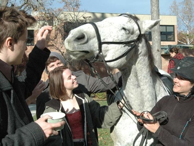 Horseplay at school