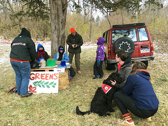 good pets and greens