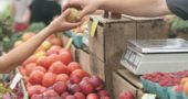 EBT card users will soon be able to use their cards to purchase goods at the YS Farmers Market.
