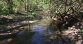 """A collaboration among Community Solutions, Tecumseh Land Trust and the Nature Conservancy was undertaken in 2017 to help restore — and """"re-meander"""" — Jacoby Creek. (Photo via Community Solutions, communitysolution.org/new-gallery)"""