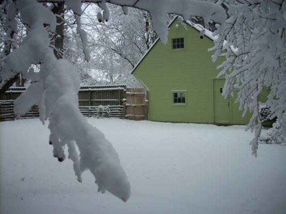 Our first winter in Yellow Springs (Photo by Grant Hackett)