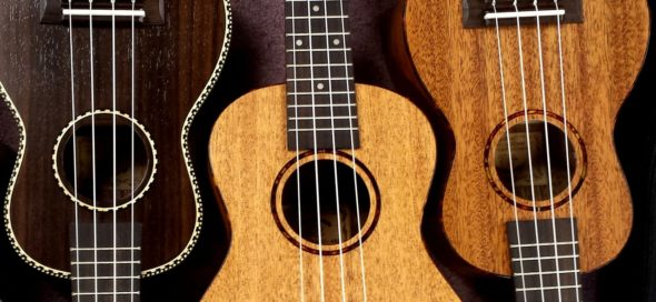 Beginners are especially welcomed to join the YS Ukulele Club.