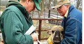Veterinarian Scott Hosket in 2005: at left, talking with Randy Rife about one of his sheep during visit to Rife's Miami Township farm. (Photo by Diane Chiddister)