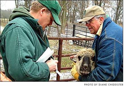 Veterinarian Scott Hosket in 2005, at left, talking with Randy Rife about one of his sheep during visit to Rife's Miami Township farm. (Photo by Diane Chiddister)