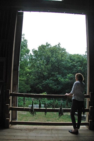 Community Solutions Executive Director Susan Jennings looked out at the Agraria farm from the renovated barn at the 128-acre property just west of the village. Community Solutions' annual meeting will be at Agraria on Saturday, July 21, from 2 to 4 p.m. (Photo by Megan Bachman)