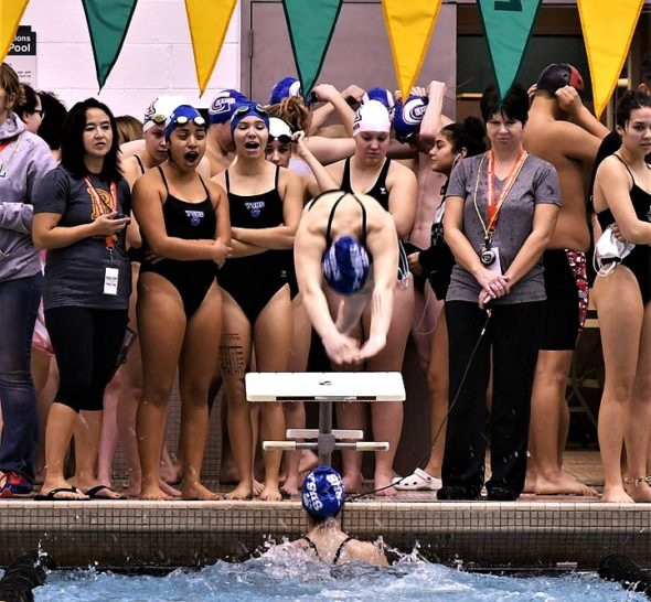 Natalie Galarza (freestyle) anchored the 200 medley relay. Eden Spriggs, in the water, just completed the butterfly; Sara Zendlovitz (breaststroke) and Jude Meekin (backstroke) are cheering on.  (submitted Photo by Kathleen Galarza)