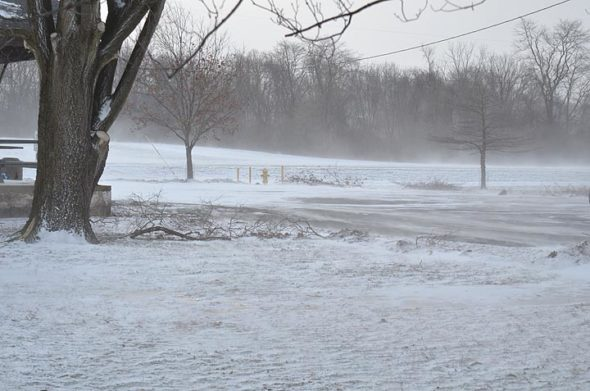 Subzero temperatures and fine dry snow blew across fields Wednesday morning, Jan. 30. The weather caused schools and businesses to close. (Photo by Megan Bachman)