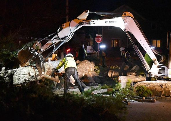 The Village of Yellow Springs street crew worked late into the night on Sunday, Feb. 24, to clear Dawson Street after a 50-foot-tall evergreen uprooted and fell over in high winds earlier in the day. (Photo by Kathleen Galarza)