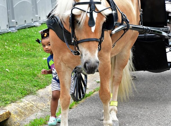 "Feet of all shapes and sizes trod the streets during Saturday's Spring Street Fair. Shown here is ""little Sophia"" with a big friend, Sandy King's horse, Daisy. (Photo by Kathleen Galarza)"